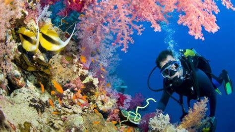 top  scuba diving hot spots