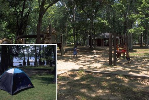 Lake Bruin State Park Cabins outdoor recreation in the midst of a magnificent cypress