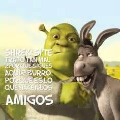 imagenes de amor chistosos del burro shrek 1000 images about humor on pinterest frases domingo