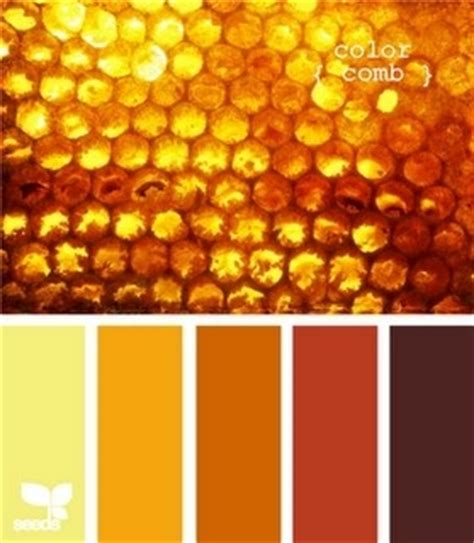 best 25 honey colour ideas on what to use in place of honey in a image wall paint