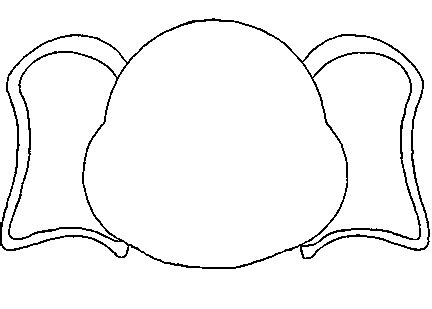 elephant head template clipart best