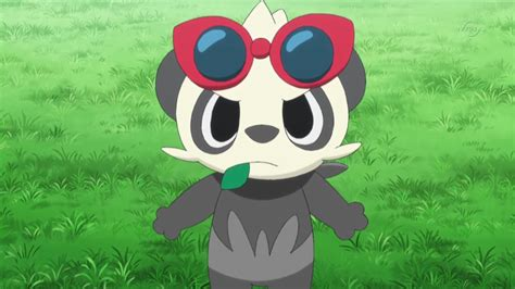 serena s pancham pok 233 mon wiki fandom powered by wikia
