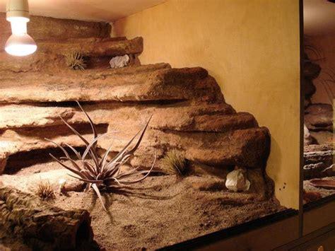 terrarien und rueckwaende black leopardgecko