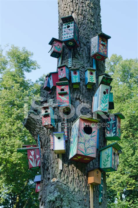 colorful bird houses colorful bird houses nest box hang tree trunk stock