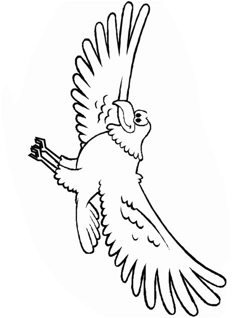 cartoon eagle coloring pages eagle cartoon pictures cliparts co