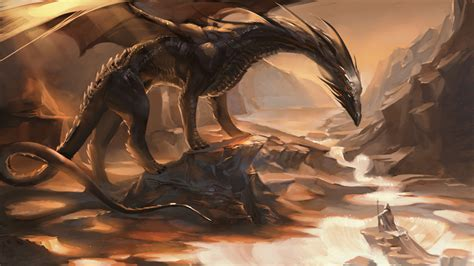 the dragon the dragon dragons photo 33202001 fanpop