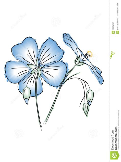 style flower flax flower in watercolor style stock vector image 32984015