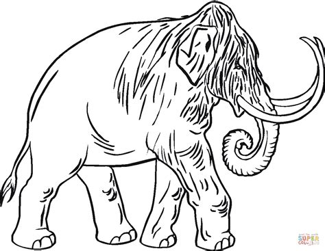 wooly mammoth coloring page coloring pages