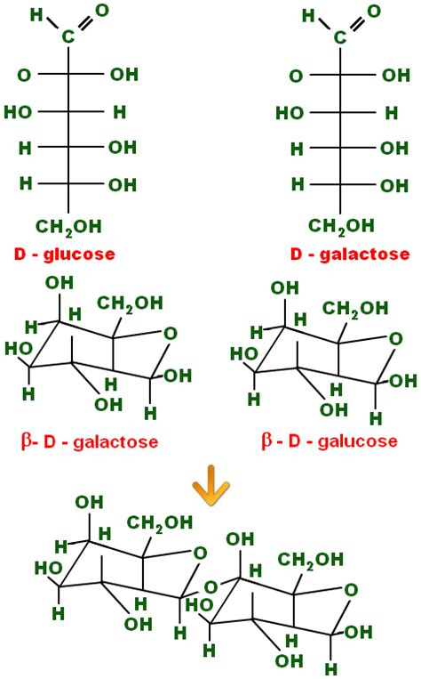 structural formula chemistrytutorvistacom lactose lactose monohydrate lactose chemical formula