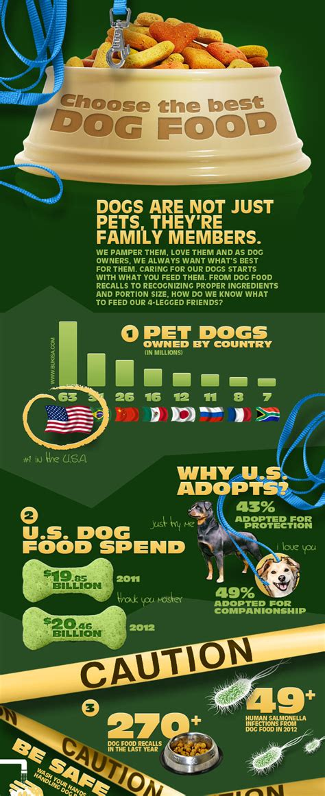why do dogs always want food what is the best food food infographics