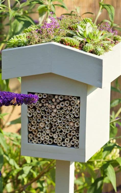 Best 25  Bug hotel ideas only on Pinterest   House insects