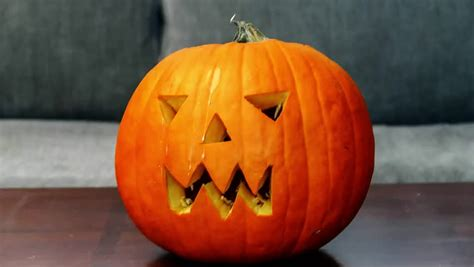 significance of pumpkin in pumpkin definition meaning