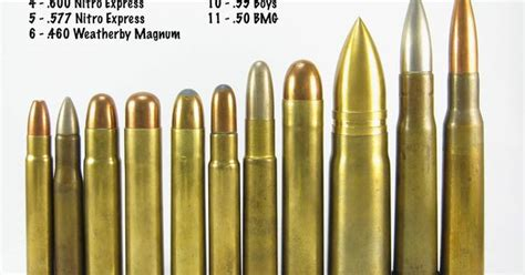 Bullet Comparison Large Caliber Tank Busters One Of High Caliber Rifle Ammo Search Ammo