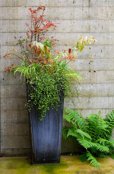 outdoor planter ideas fresh ideas for fall planters the gardenist apartment