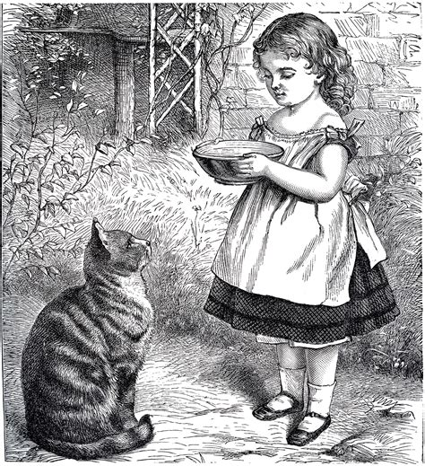 public domain  girl  cat sweet