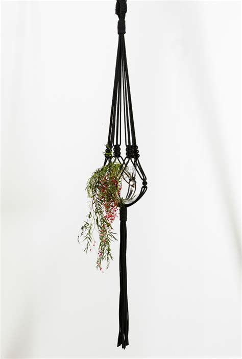 Macrame Plant Hanger Knots - lines macrame plant hanger by the knot studio miss v