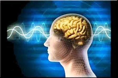imagenes fatiga mental detectan la red cerebral responsable de la fatiga mental