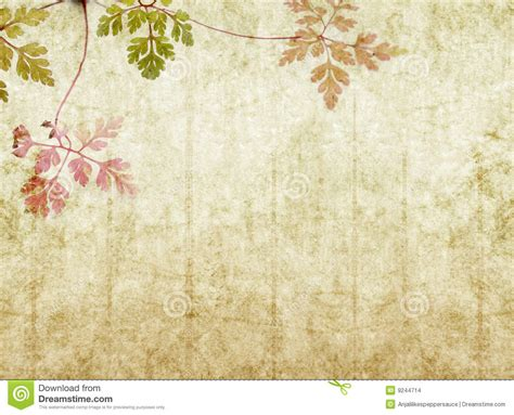 Texture Wall Paint by Earthy Background Image Stock Images Image 9244714