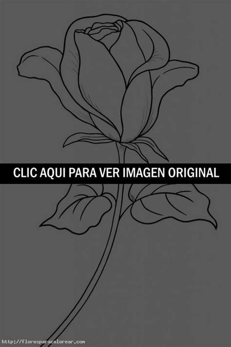 imagenes de una rosa para dibujar a lapiz c 243 mo dibujar una rosa flores para colorear