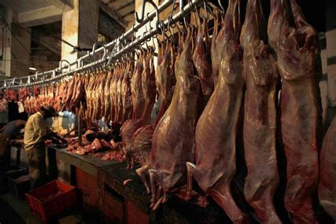 slaughter houses plea in ngt against illegal slaughter houses in up the financial express
