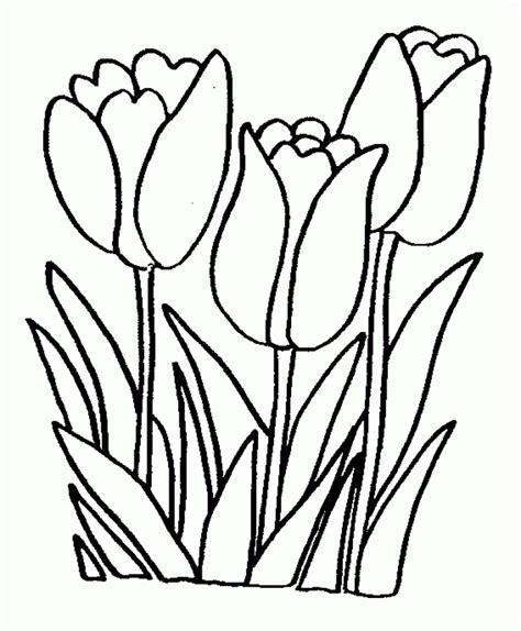 imgs for gt flower coloring pages for girls 10 and up