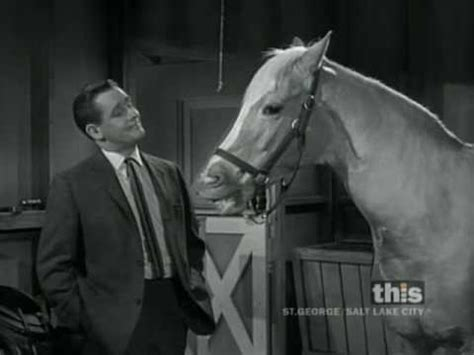 theme song mr ed clint eastwood meets mister ed 1 of 2 captioned youtube