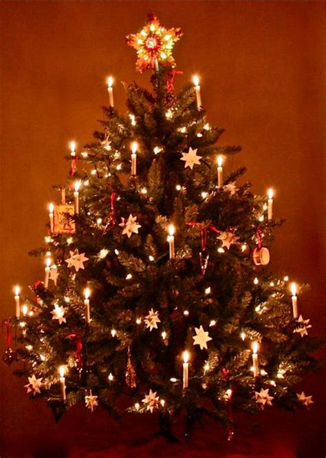 moravian star christmas tree days of yore pinterest