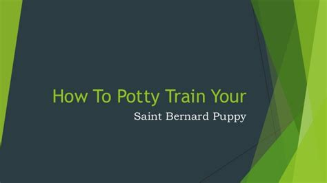 how to get your potty trained how to potty your bernard