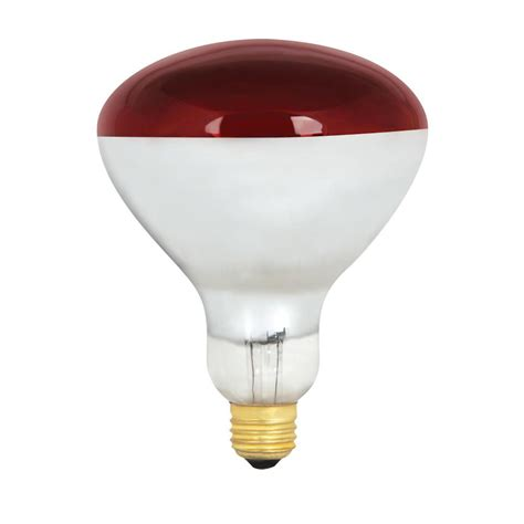 250 watt light bulb philips 250 watt r40 incandescent heat l bulb 4
