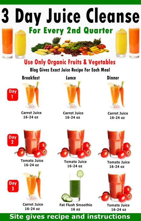 Gerson Detox Plan by 178 Best Healthy Tips Images On Drink Health