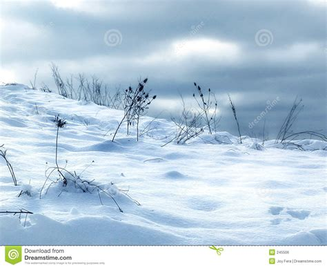 school in snow royalty free stock image image snow drifts stock photo image of light peaceful dusk