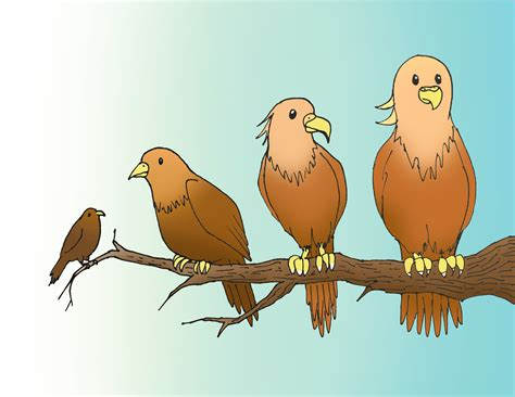 gaps in bird family tree filled