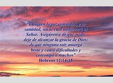 Mujer Casada: Hebreos 12:14-15 Hebrews 12:14
