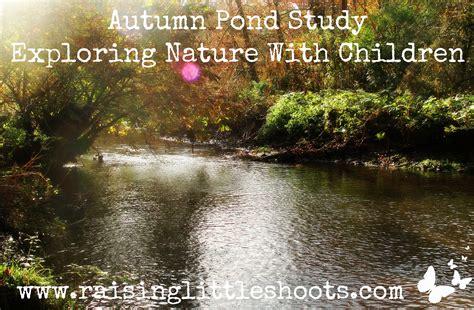 autumn pond study exploring nature  children