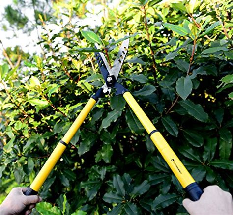 cesoie da giardino cesoie telescopiche da 56 cm affilate e facili da usare