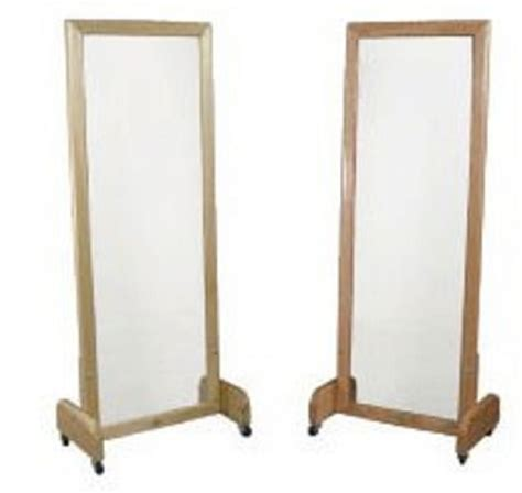 floor stand posture mirror free shipping