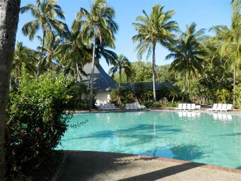 hamilton island bungalows pool area picture of palm bungalows hamilton island