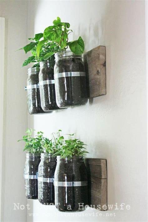 Indoor wall herb garden home ideas pinterest