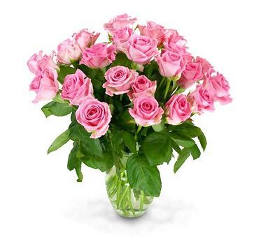 Pink Roses In A Vase by Two Dozen Boxed Pink Roses With Vase U S A