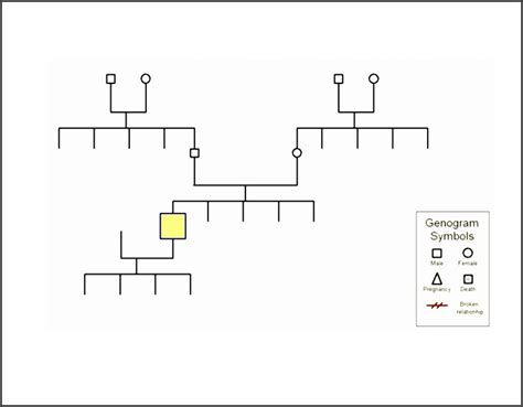 9 Genogram Template Online Sletemplatess Sletemplatess Genogram Templates For Microsoft Word