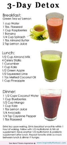 Dr Oz 3 Day Detox Recipe by 1000 Ideas About Waist Workout On