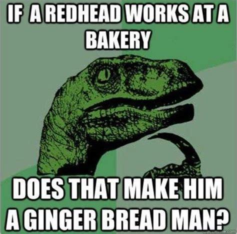Funny Ginger Memes - ginger jokes gingers pinterest jokes ginger jokes