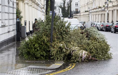 where to get rid of your 2017 christmas tree in london