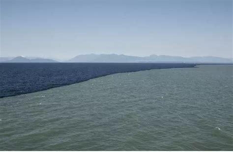 gulf of alaska, where two oceans meet but never mix lateet