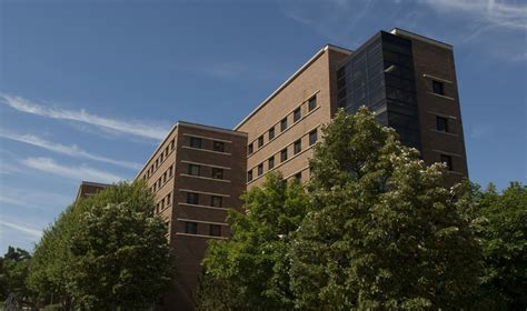 Msu Mba Office by Gupta Recommended As Acting Dean Of Eli Broad College Of