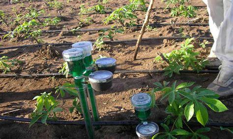 soil moisture meters  perfect watering epic
