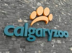 calgary zoo light hours zoo entrance picture of the calgary zoo calgary