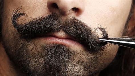best moustache 9 best moustache styles you should try the trend spotter