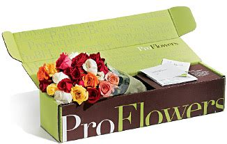 Proflowers Gift Card - review and giveaway proflowers valentine s day 100 gift card southern bella s