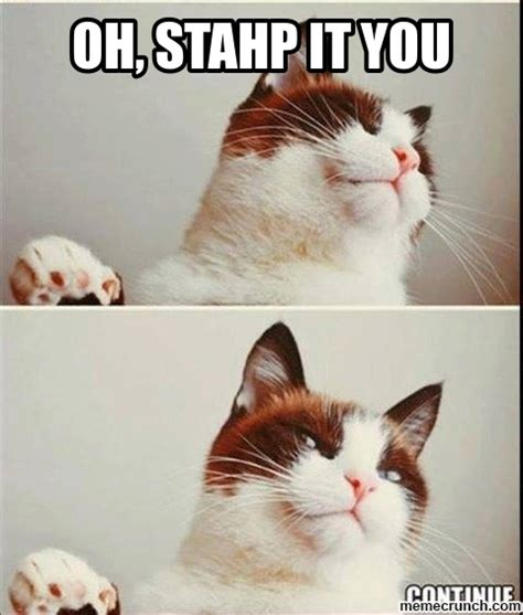 Oh You Stop It Meme - oh stop it you cat